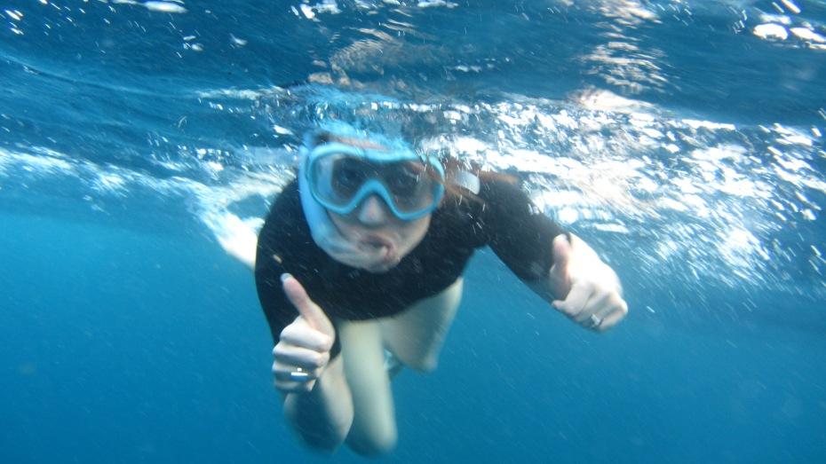 On croise toutes sortes d'animaux étranges sous l'eau... certains ont l'air de vouloir communiquer !